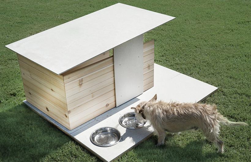 cuccia per cani puphaus