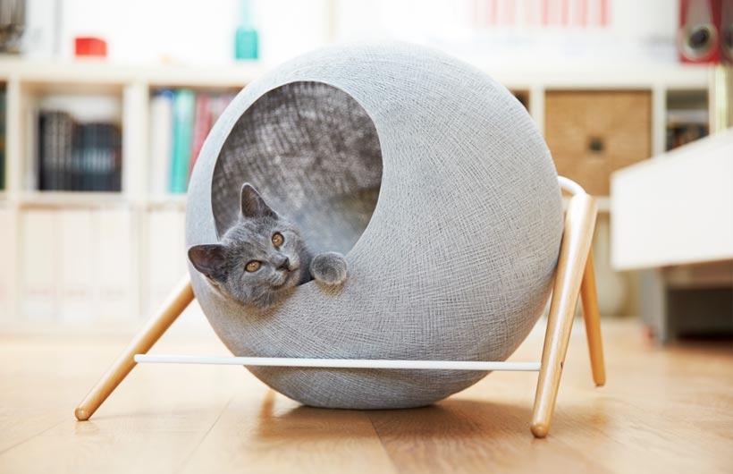 Cucce per gatti di design e trasportini 3 soluzioni for Cucce per gatti da esterno coibentate