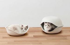 Cucce per gatti e per cani