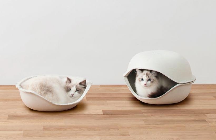 Cucce per gatti (e per cani) con un occhio al design e l'altro all'ambiente.