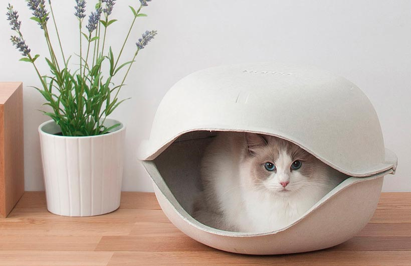 Cucce per gatti e per cani di design ed eco friendly for Cucce per gatti da esterno coibentate