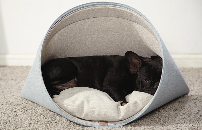 Cuccia per cani Howly Pet Bed