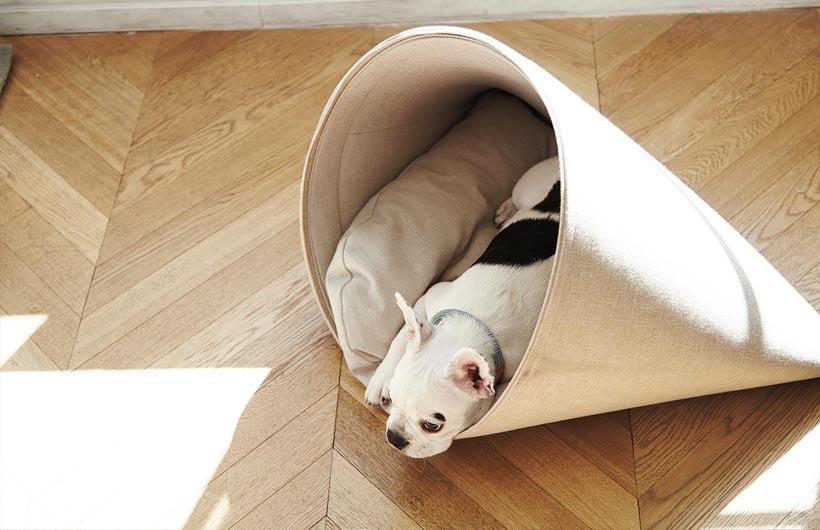 Cucce per gatti e per cani di design ed eco friendly - Cuccia per cani interno ...